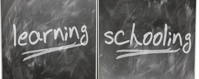 """Tafel mit Aufschrift """"learning"""" und """"schooling""""."""